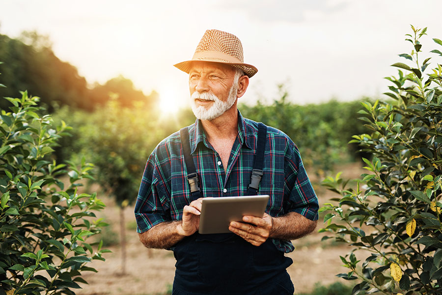 Specialized Business Insurance - Portrait of Mature Farmer Standing In Field Of Trees Using His Tablet